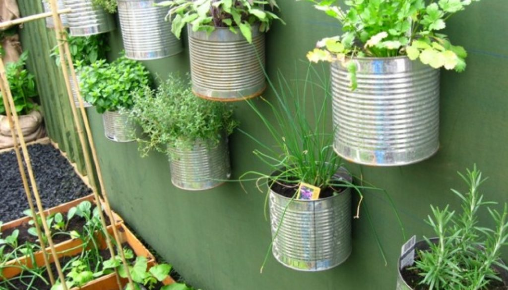 Awesome Make Your Terrace A Vegetable Garden